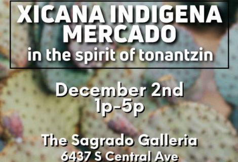 Compras – Mercado Xicana Indígena